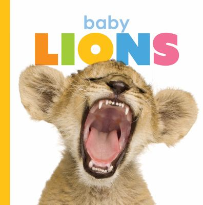 Baby lions by Kate Riggs