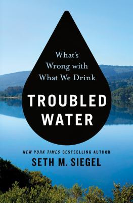 Troubled water by Seth M. Siegel, (1953-)