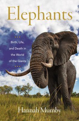 Elephants by Hannah Mumby