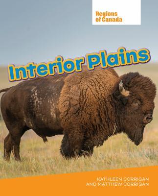 Interior plains by Kathleen Corrigan