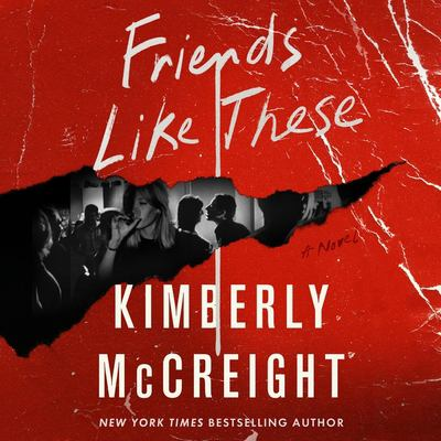 Friends like these by Kimberly McCreight