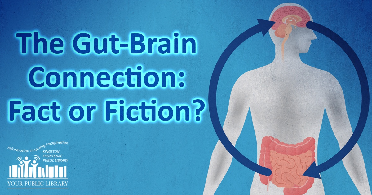 The gut brain connection fact or fiction